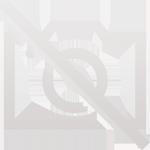 Амортизатор передний NPR75 / NQR71 / NQR75 / Богдан (Япония)